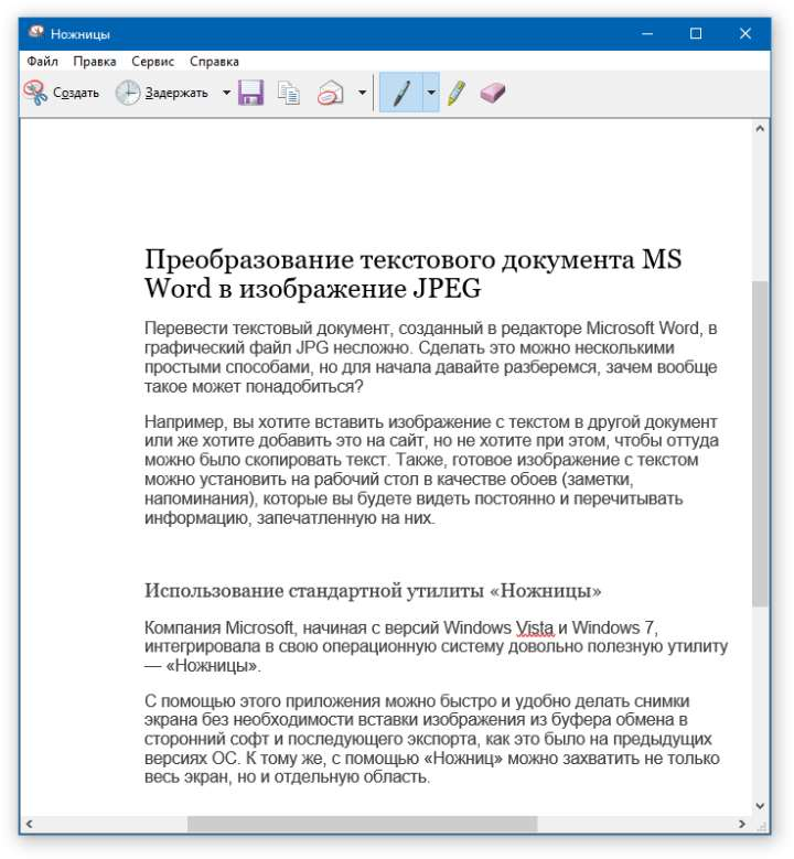 ms word for windows vista